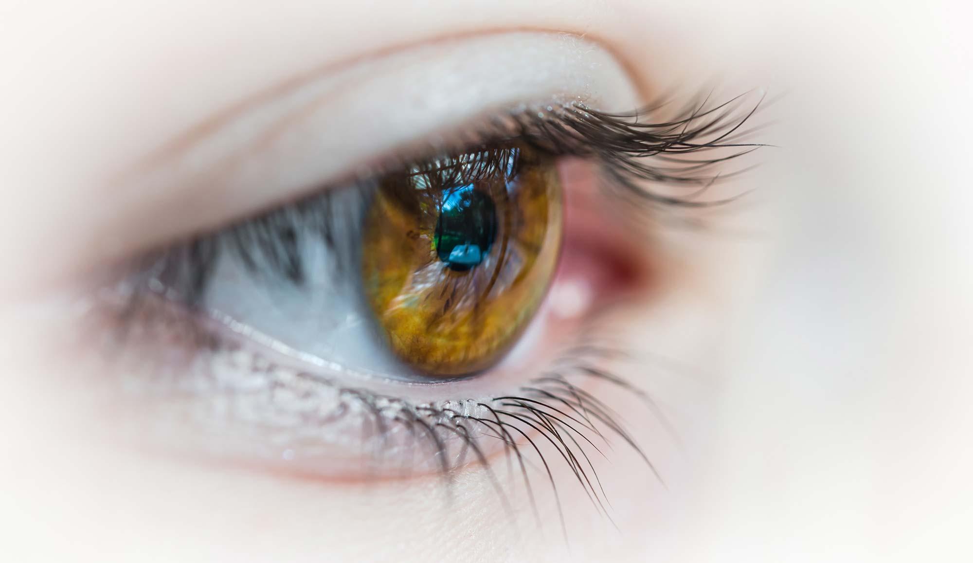 What is Presbyopia: Treatment, Symptoms, Diagnosis