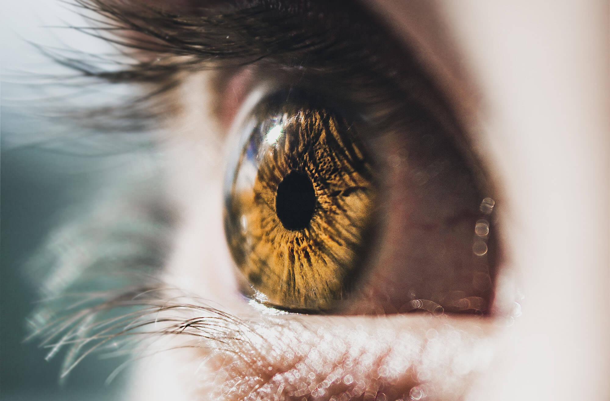 Eye color hazel true 8 Interesting